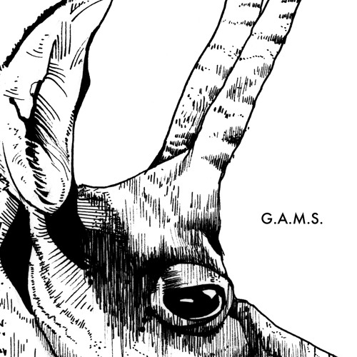 G.A.M.S. - Rumba
