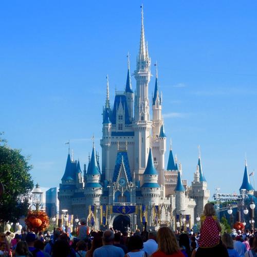 042: Magic Kingdom Trip Report
