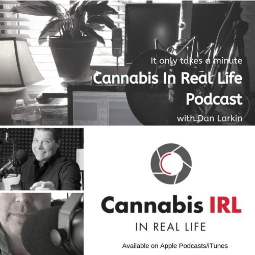 Cannabis In Real Life with Dan Larkin- 031