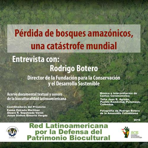 Pérdida de bosques amazónicos, una catástrofe mundial - Entrevista con Rodrígo Botero