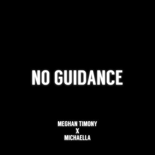 No Guidance Image