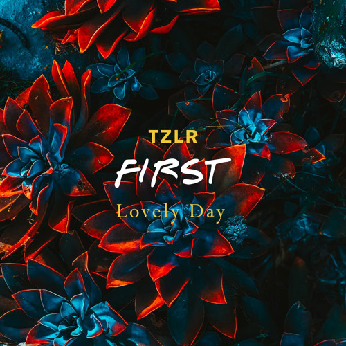 TZLR - Lovely Day