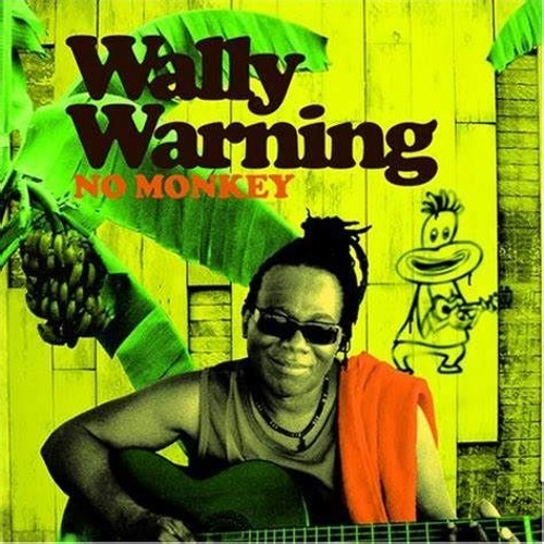 NO MONKEY (STP RMX) - WALLY WARNING