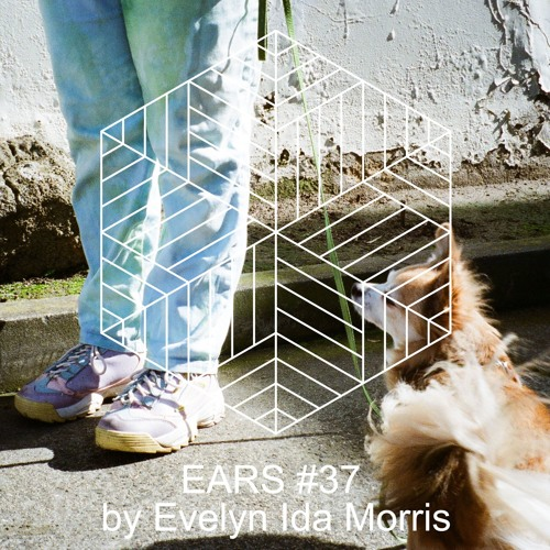 EARS #37: Updating The Past mix by Evelyn Ida Morris