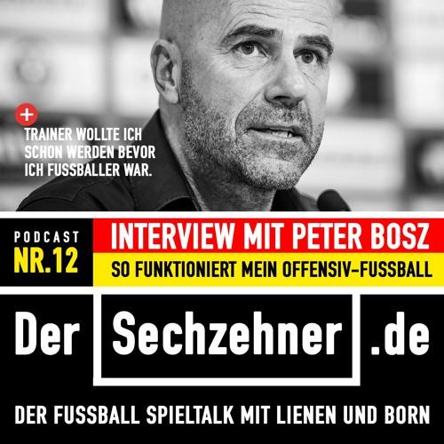 Der Sechzehner #12 Gespräch mit Peter Bosz