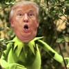 Muppet President -