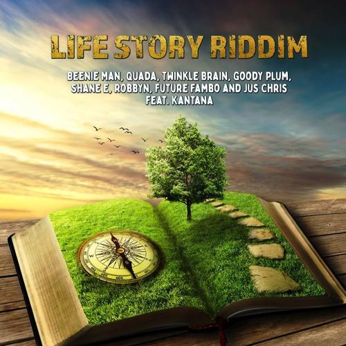 Twinkle Brain - My Life [Life Story Riddim]