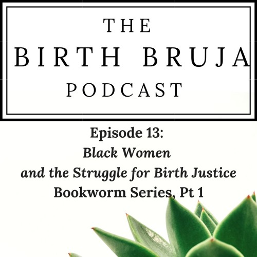 Ep. 13: Black Women and the Struggle for Birth Justice, Bookworm Series, Pt 1