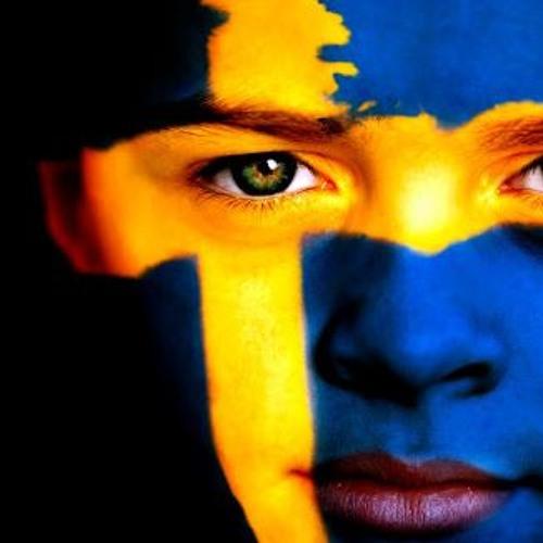 Intervju/samtal om den VERKLIGA SVERIGE BILDEN med Conny Andersson 20190821