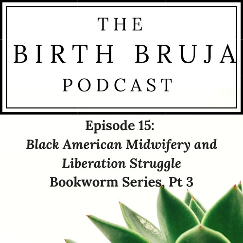 Ep. 15: Black American Midwifery and Liberation Struggle, Bookworm Series, Pt. 3