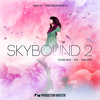 Download Production Master - Skybound 2 Mp3