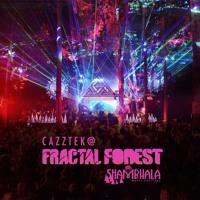 CAZZTEK LIVE @ SHAMBHALA 2019 | FRACTAL FOREST