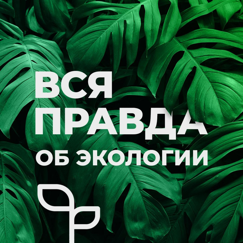 Миф 7: «Экономика не может быть в гармонии с природой»