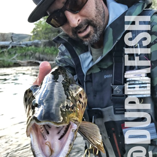 65 Christian Bacasa,  Dupeafish