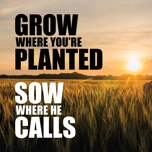 Grow where You are Planted Sow where He Calls - Send International - John and Sandra Drost