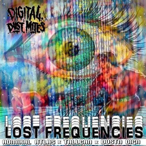 digital dustmites : lost frequencies