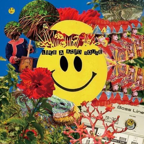 Acid House Jurassic (Classic Acid Mix)
