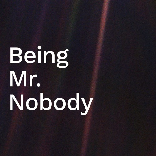 'Being Mr Nobody' / Amy Anderson