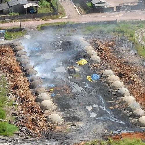 Europa e Estados Unidos financiam o desmatamento no Brasil