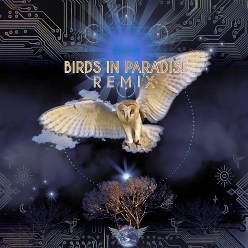 Bird Tribe - The River (Shamans Dream & Geometrae Remix)