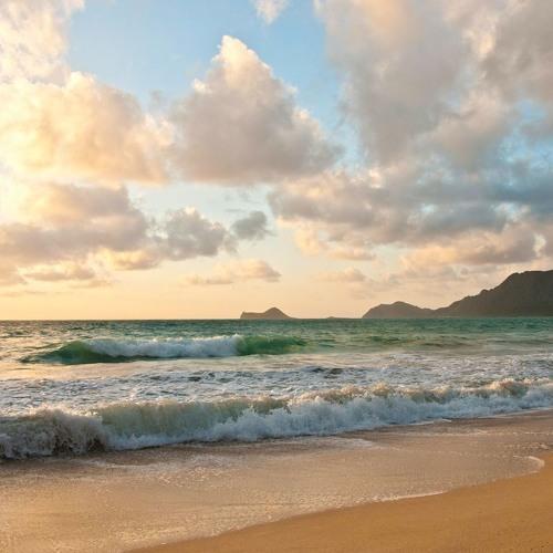 #63: Oahu Meet and Greet (part 1)