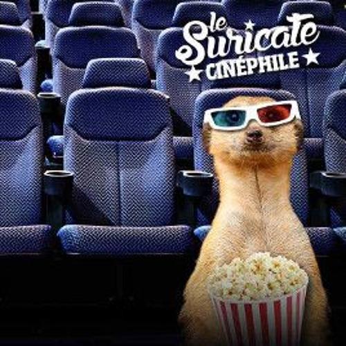 Le suricate cinéphile
