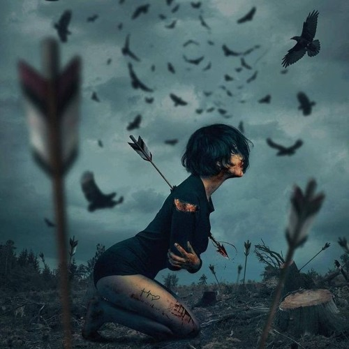 Friends & Crows