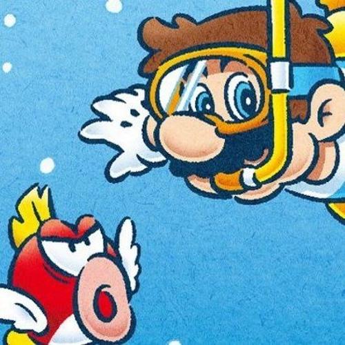 Underwater Theme - Super Mario Bros - Violin & Cello Duet