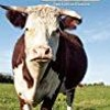 DOWNLOAD Beef Cattle Keeping a Small-Scale Herd for Pleasure and Profit