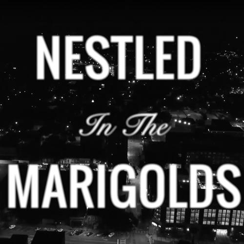 """""""Nestled In The Marigolds"""" by Nikolas Geerken"""