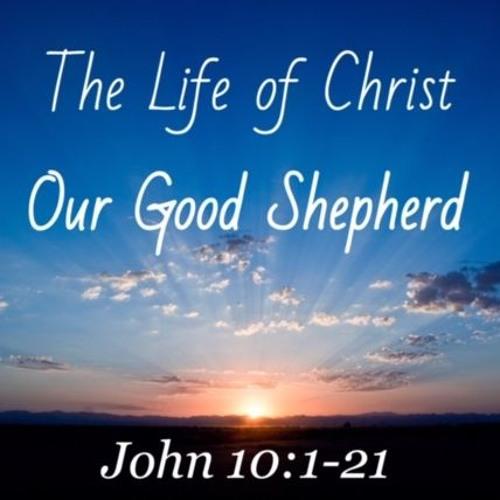 Our Good Shepherd