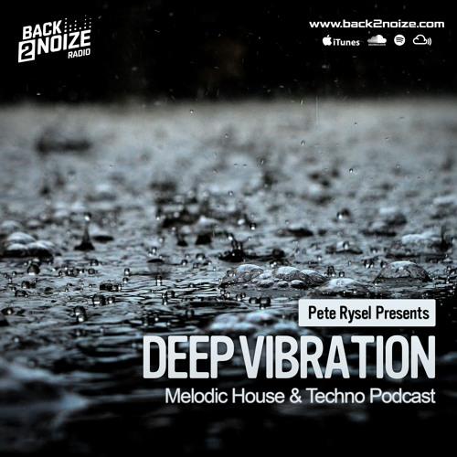 Pete Rysel - Deep Vibration Podcast // Broadcasted on Back2Noize Radio
