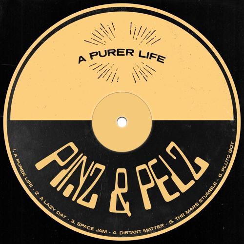 Pinz & Pelz - Distant Matter