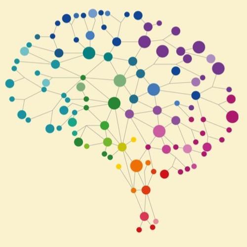 1. Mediterend Je Brein Leren Kennen