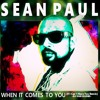 Sean Paul - When It Comes To You (If I Can't Have You Remix) - DJ SGR Blend Portada del disco