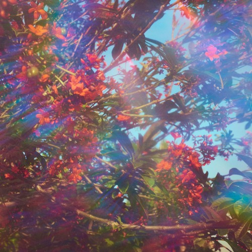 Constant Shapes - Rainbow Rituals