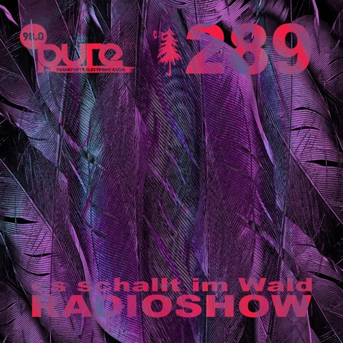ESIW289 Radioshow Mixed by Christian Bauer