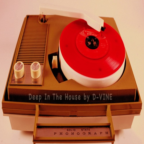 Deep In The House by D-VINE