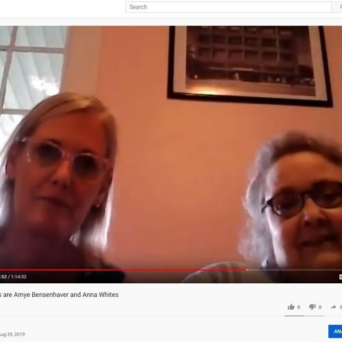 Save Our Schools | Amye Bensenhaver & Anna Whites | KY PTA Lawsuit