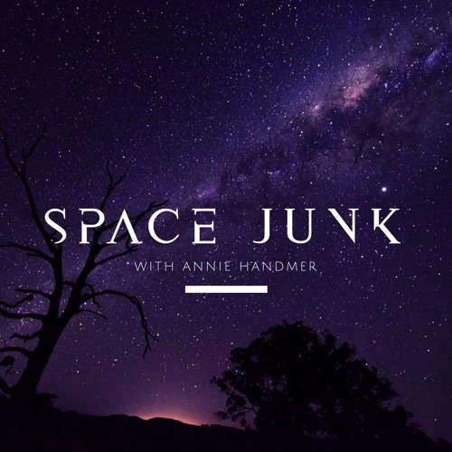 Space Junk - Planetary Protection Laws: tardigrades on the Moon (with Chris Johnson)
