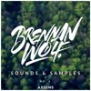 Free Future Bass Sample Pack by Brennan Wolf (Buy=Free Download)