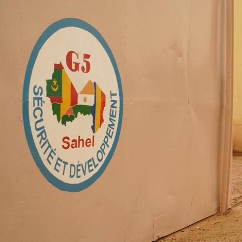 """Thomas Schiller: """"On ne peut pas réduire le G5 Sahel seulement à la force conjointe"""""""