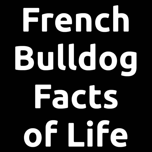 Little Saigon Report #159: French Bulldog Reproduction!
