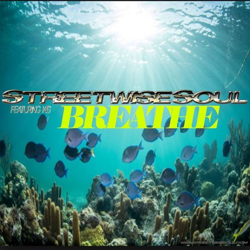 StreetwiseSoul - Breathe