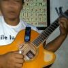 Tanah Airku (Ibu Sud) - fingerstyle keroncong (cover)