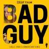 Billie Eilish ft. Justin Bieber - Bad Guy (Single Spark & Romain Dary Remix) [Free Download]