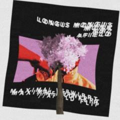 BHZ // LONGUS MONGUS // MONK - MAXIMAL VERWIRRT //AFIELD FLIP