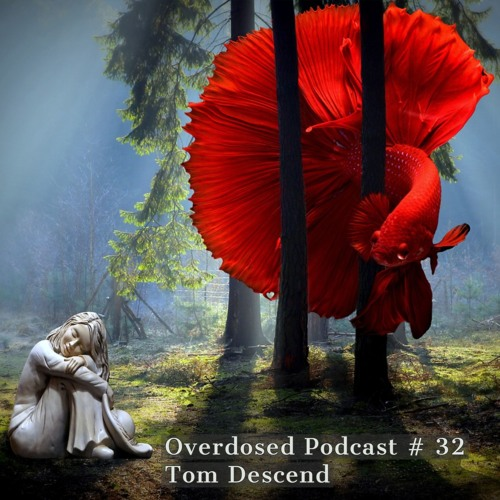 Overdosed Podcast # 32 Energetic in Love by Tom Descend