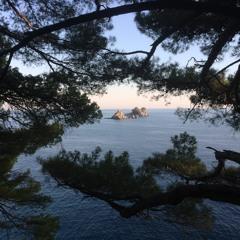 Adriatic Noon