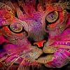Resonanz Ecstatic Dance  ✦✦✦ PARADISO Ubud Bali